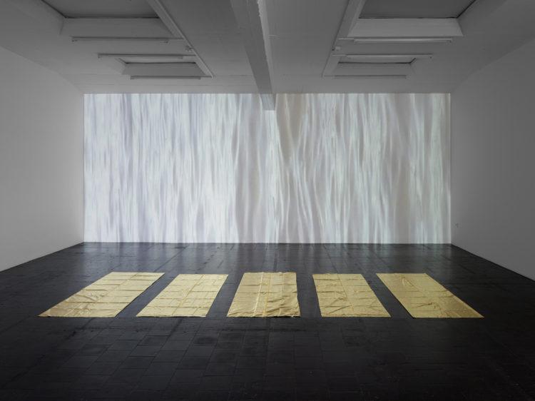 Edith Dekyndt — AWARE Women artists / Femmes artistes