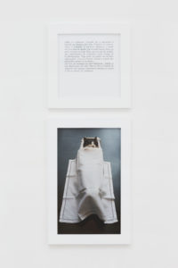 On the trail of Sophie Calle and Serena Carone: Beau doublé, monsieur le marquis! - AWARE Artistes femmes / women artists