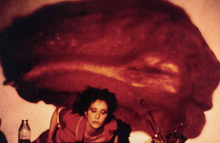 Carolee Schneemann — AWARE Women artists / Femmes artistes