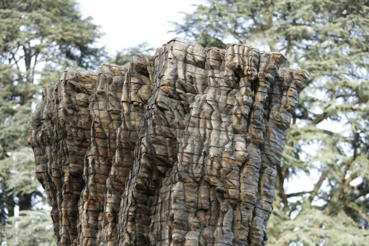 Now, She: Two Sculptures by Ursula von Rydingsvard - AWARE