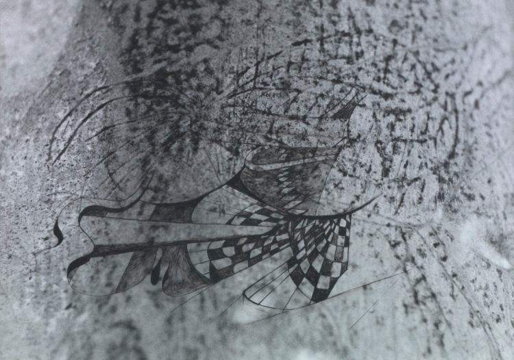 Tacita  Dean — AWARE Women artists / Femmes artistes