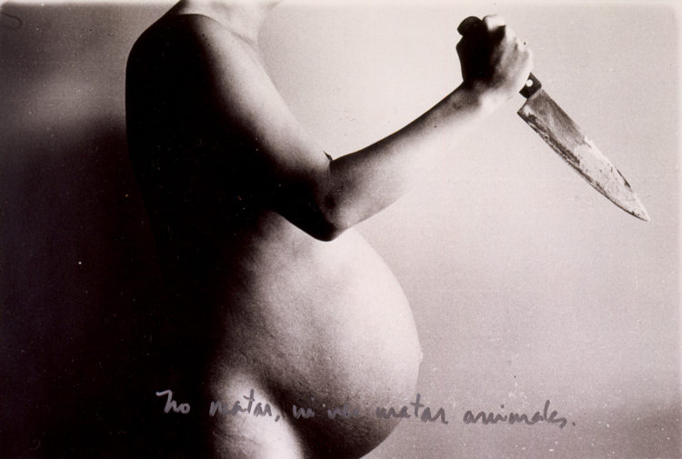 Maternal artivism: a brief overview of Latin American women artists in the eighties - AWARE