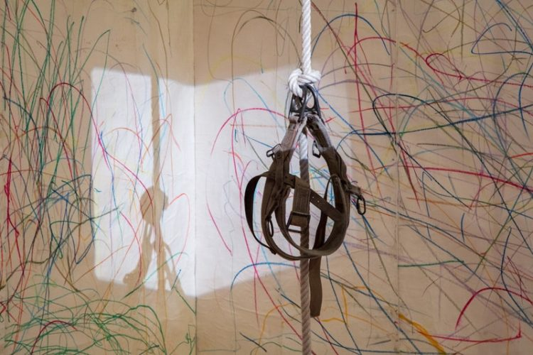 Up to and Including Limits: After Carolee Schneemann - AWARE
