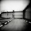 Rula Halawani — AWARE