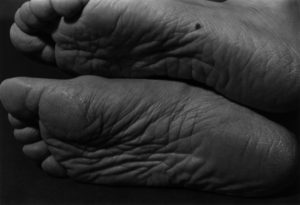 Ishiuchi Miyako: Photography as a Trace - AWARE Artistes femmes / women artists